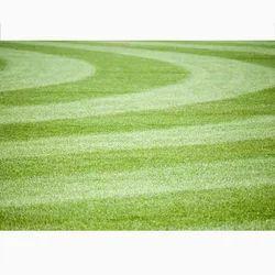 Green Sports Turf
