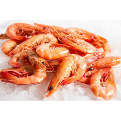 Giant Fresh Water Prawn, For Pond, Packaging Type: Plastic Bag With
