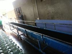 Bottle Transfer Conveyor System