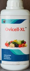 Ovicell-XL