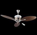 Florina Decorative Ceiling Fan