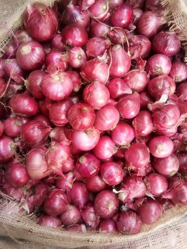 A Grade Dry Fresh Onion, Packaging Type: Gunny Bag