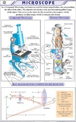 Microscope For Physics Chart