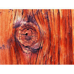 Wood Testing Services