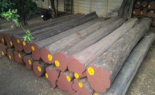 Burma Teak Wood Sri Laxmi Saw Mill Retailer In 100 Ft