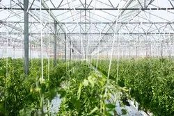 Greenhouse Drip Irrigation System Services