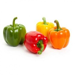 Capsicums Cold Storage Rental Service