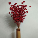 Red Sola Flower Stick, Pack Size: 25 Piece