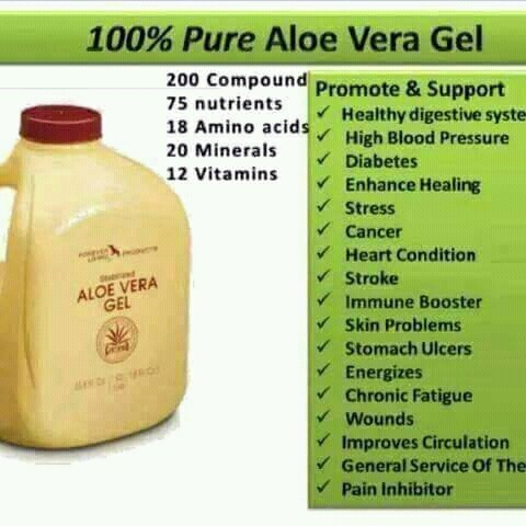 aloe vera business plan in india Supplier of aloe vera processing plant, aloevera juice plant, aloevera gel extraction plant, aloevera powder plant, aloevea filleting machine offered by best engineering technologies, hyderabad, andhra pradesh, india.
