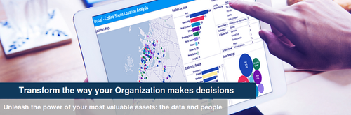 Tableau Service and Advanced Analytics Service Consultants