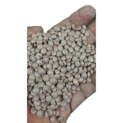 Grey Masoor Dal, High in Protein, Packaging Size: 50 Kg