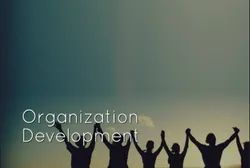 Organizational Development Course