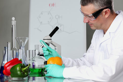 Food Testing Services - Pulses Testing Services Service Provider