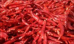 Red Chili Whole Capsicum Annuam