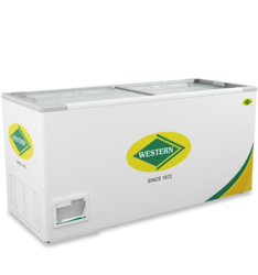 Deep Freezer WHF525G