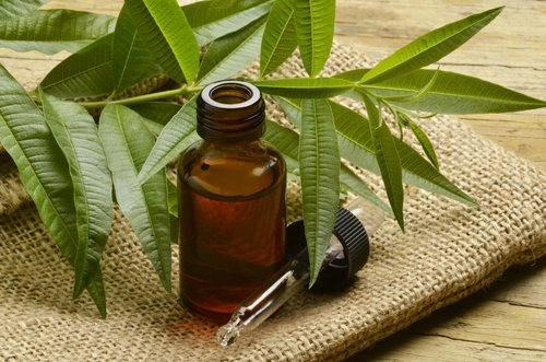 Healing Acne With This 5 Amazing Essential Oils 3