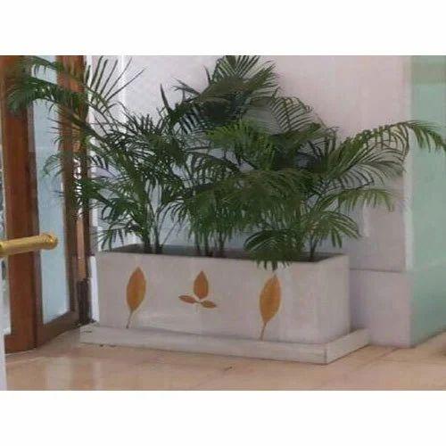 Outdoor Or Indoor Planter Box