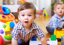 El Vivero Nursery
