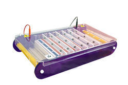 ACE Series Maxi Horizontal Immersed Gel Electrophoresis Unit
