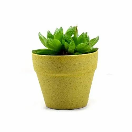 Star Garderns Plain Indoor Ceramic Flower Pot  sc 1 st  IndiaMART & Star Garderns Plain Indoor Ceramic Flower Pot Rs 160 /piece | ID ...