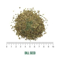 JK Dried Anethum Graveolens/ Dill Seed / Suwa, Packaging Type: Bag, Packaging Size: 50 Kg
