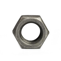 Hex Iron Nut