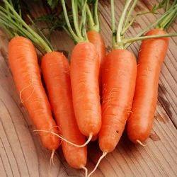 Fresh Carrot, Packaging: Plastic or Polythene Bag