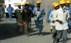 Contract Labour Service