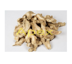 Apex Double Cleaned Dry Ginger, Cooking & Medicine, Packaging: PP Bags
