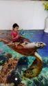 3D Glass Flooring