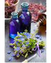 Lavender Reconstituted Oil