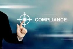 Consulting Firm IT and Consulting ROC, RBI, XBRL, SEBI Filing
