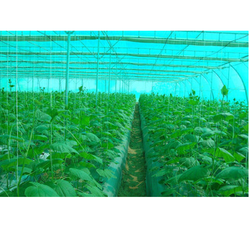 Agricultural Greenhouse Shading