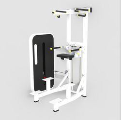 Presto Chin Dip Weight Assist Machine