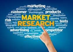 Online And Offline Rural Market Research Services, in Pan India