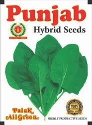 Palak Seeds All Green