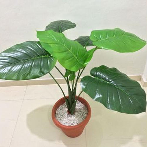 artificial green plants at rs 1750 /piece | ashok stambh | nashik