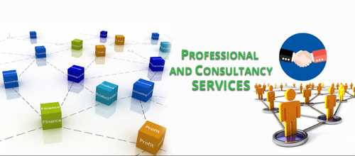 Professional Consultancy Services