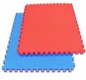 25 Mm Thick Martial Arts Inter Connecting Mat Red & Blue (No Pasting)