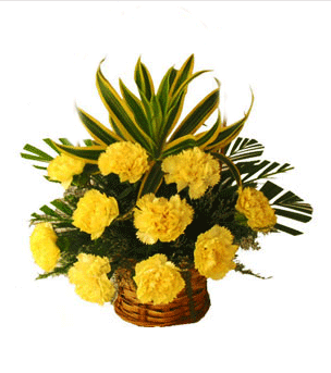 12 yellow carnation basket at rs 900 piece street no 16 new 12 yellow carnation basket mightylinksfo