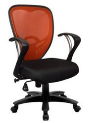 Seat Adjustable Netted Chair