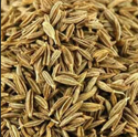 Extra Find Colour Cumin Seed