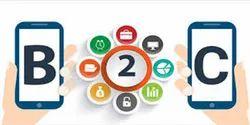 B2C Portal Development Services