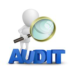 Corporate Environmental Auditing Services