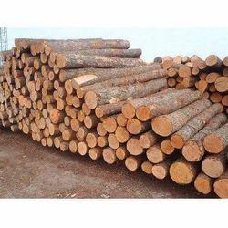 Hardwood Wooden Log