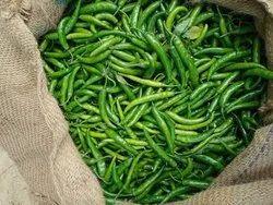 Greens Chilli A Grade Green Chillies, UP Muzaffarnagar, Packaging Size: 40