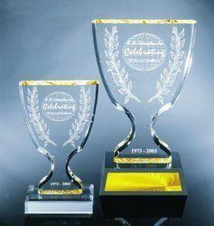 Cup Shape Acrylic Trophy