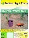 Coconut Trap For Controlling Red Palm Weevil (Rhynchophorus Ferrugineus)
