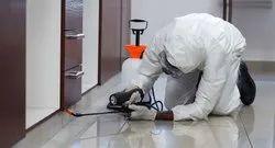 Termite Treatment Service
