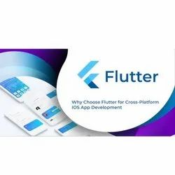 5-7 Days Online Flutter IOS Application Development Service